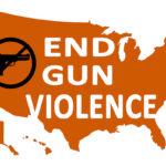 End gun violance